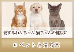 ペット用オーダーメイド漢方
